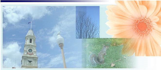 山形 大学 webclass WebClass